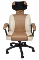 power-chair-rc-b2b-1