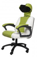 power-chair-rc-b2b-1-zelenoe1-1